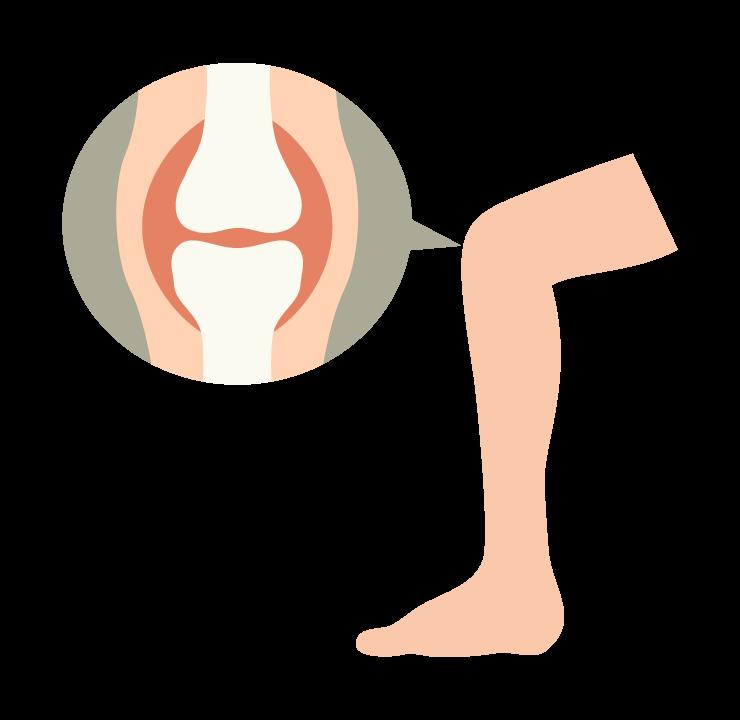 膝に痛みが出る前に八女整骨院なかきどにご相談ください